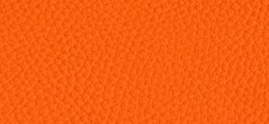 bel-3306-papaya