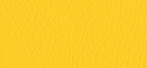whi-076224-citrus