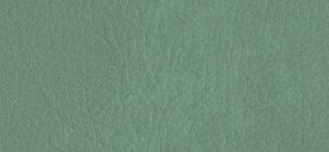alg-7063-sage-green