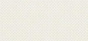 apx-2554-brilliant-white