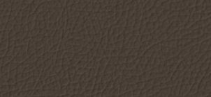 ver-7731-graystone