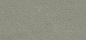 was-9861-grey