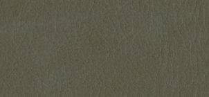 ALG-7064 Taupe